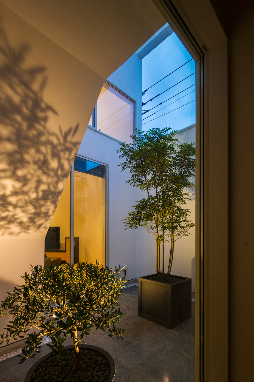 中庭:中庭を囲む白い壁に、ゆれる樹の影がうつしだされます