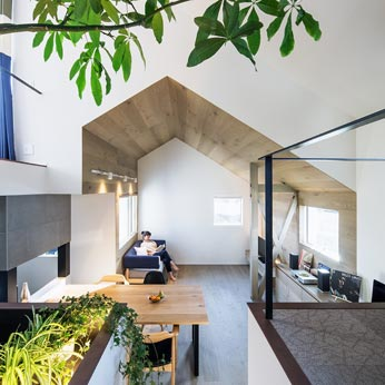 <p> ライブラリー(右手)/インドアガーデン(左手)から、リビング方面を見る:リビングの天井のかたちが印象的です。天井高を低くしてくつろげる空間に </p>