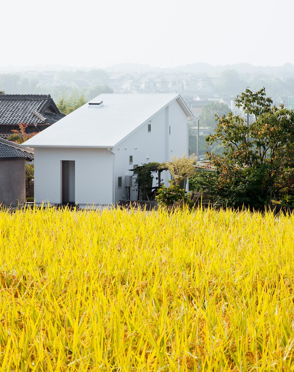 敷地の周囲には田園風景がひろがっています