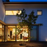 <p> 玄関から中庭、LDKを望む: 訪れた人は、この中庭のデッキとアオダモに迎えられます </p>