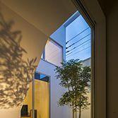 <p> 中庭:中庭を囲む白い壁に、ゆれる樹の影がうつしだされます </p>