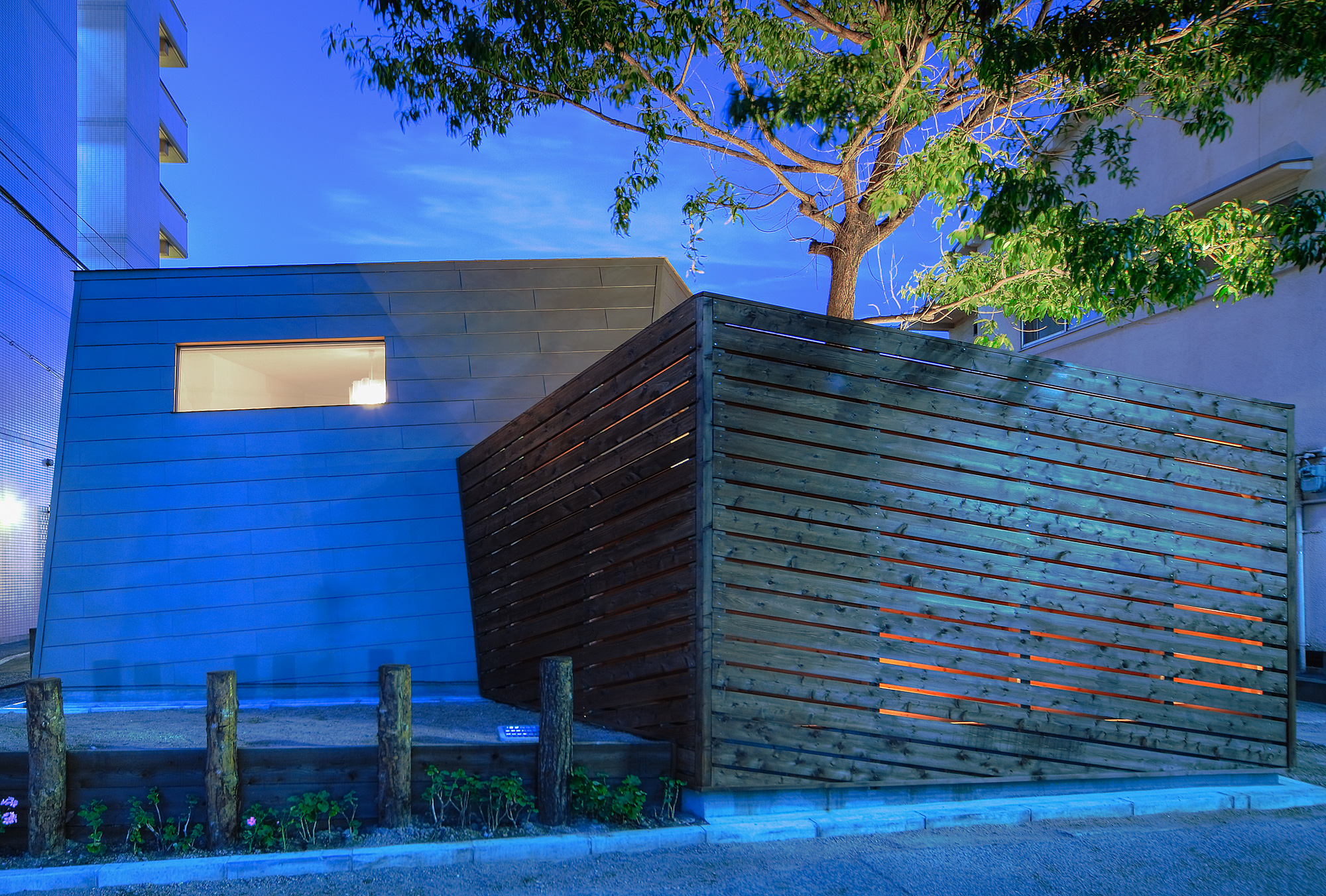 南面夕景: すまうら文庫と同じ歳、樹齢30年のクヌギと、新たな建物が互いを際立たせています