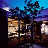 <p> 中庭よりLDKと和室を見る: 3.6mx3.6mの小さな中庭に植えられたノムラモミジが室内に影を落とし、日々の生活に季節感と風情を添えます。廻りを平屋にすることで、中庭が光と風の通り道となるように配慮しました </p>